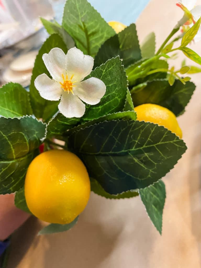 lemon stems
