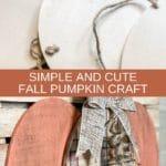 Simple and Cute Fall Pumpkin Craft